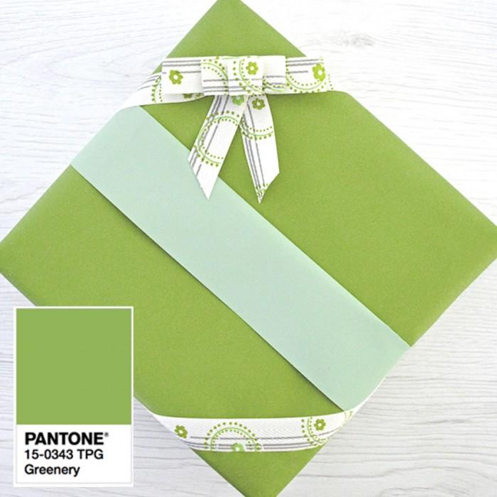 carta verde usa regalo