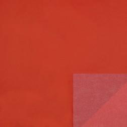 Carta Velina Rossa Double Face - 24 fogli da 50x75