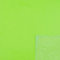Carta Velina Verde - 50 fogli da 70x100